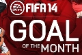 Goal of the Month shortlist