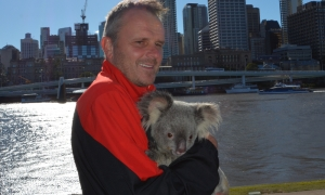 Hamann cuddles a koala in Brisbane